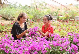 拜城县:盆栽花卉美 群众乐开怀