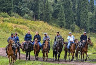 库尔德宁:马背上的护草员