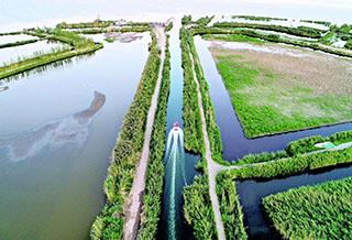博斯腾湖:船在水中行 人在画中游