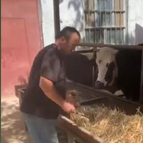艾麦尔结业后大力发展畜牧业