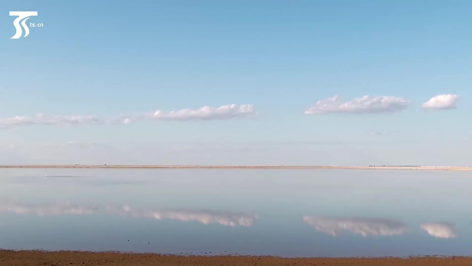 跟随南迁候鸟 俯瞰金秋玛纳斯国家湿地公园