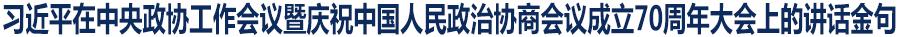 习近平在中央政协工作会议暨庆祝中国人民政治协商会议成立70周年大会上的讲话金句