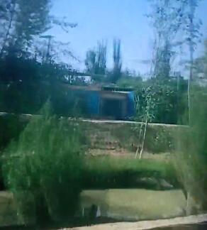 开车带着家人去乡里,途中风景优美,卫生干净整洁。