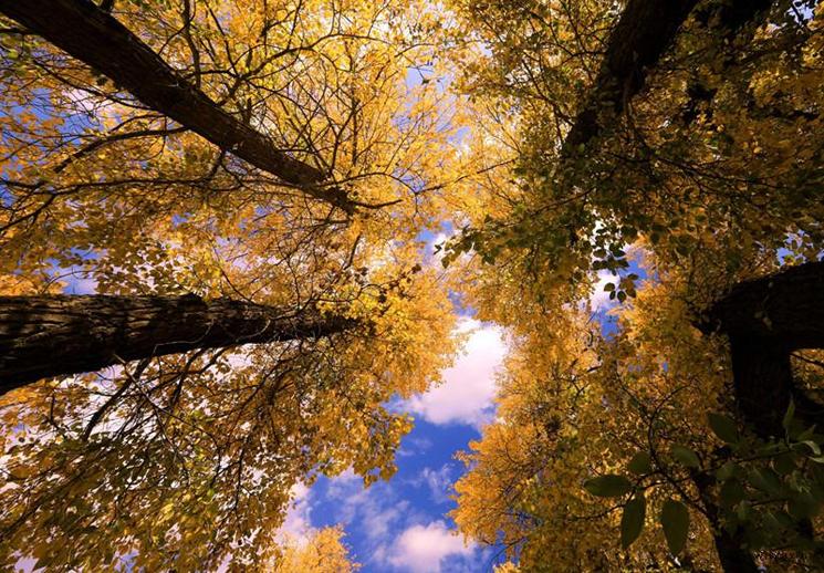 【疆遇风光】在和静县克尔古提峡谷赏美景品秋韵
