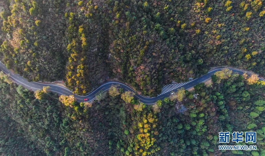 车辆行驶在通往庐山风景区的北山公路上(10月9日无人机拍摄).