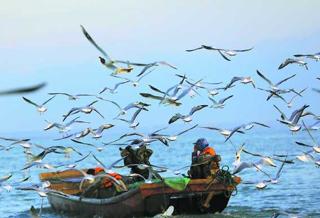 【新疆是个好地方】鱼满舱 丰收归
