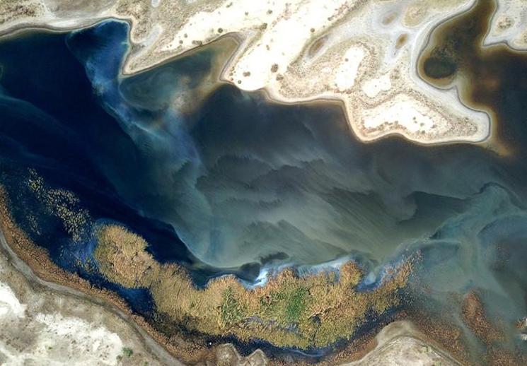 【疆遇风光】雨后新疆塔里木河湿地出现五彩斑斓景象