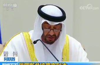 阿联酋 俄罗斯总统普京到访