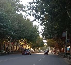 我们家乡的变化非常大,道路干净平整,环境优美空气新鲜。