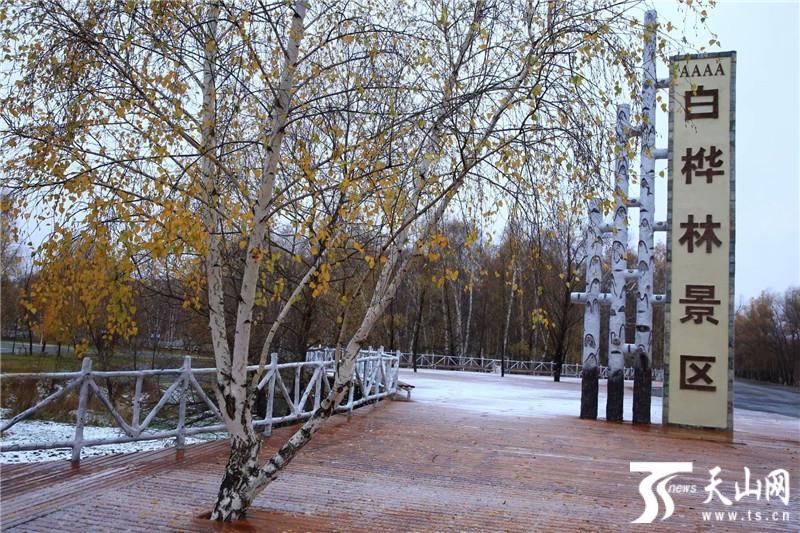 哈巴河县降下初冬首场雪