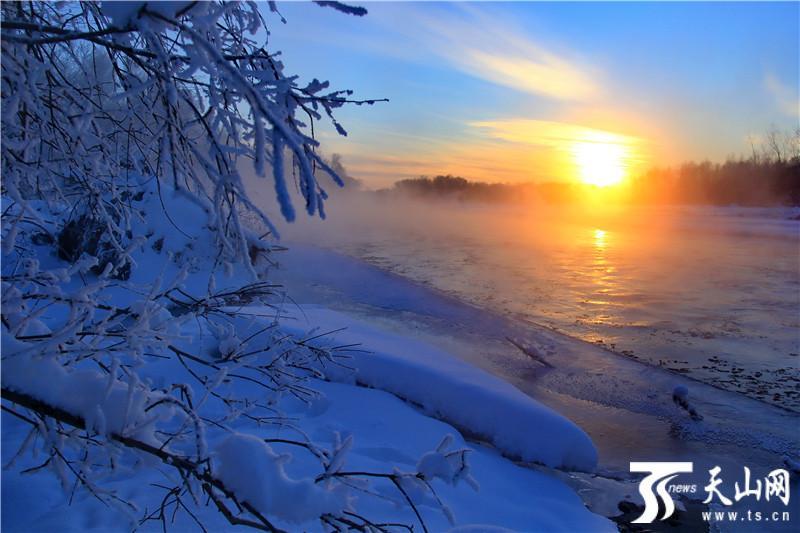 哈巴河雪桦之旅——观雾凇美