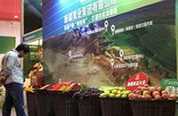 第二届中国新疆特色林果产品博览会闭幕
