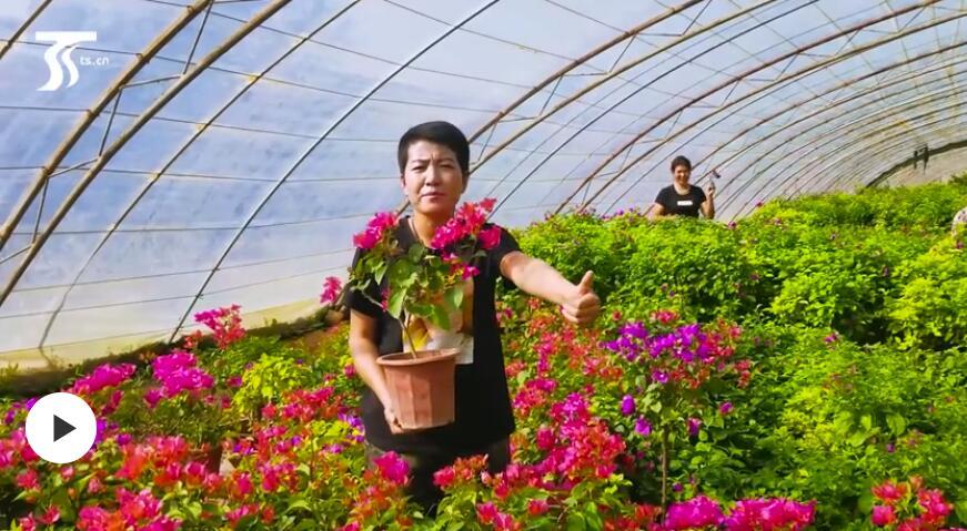 第一书记晒丰收:我为何新花卉基地代言