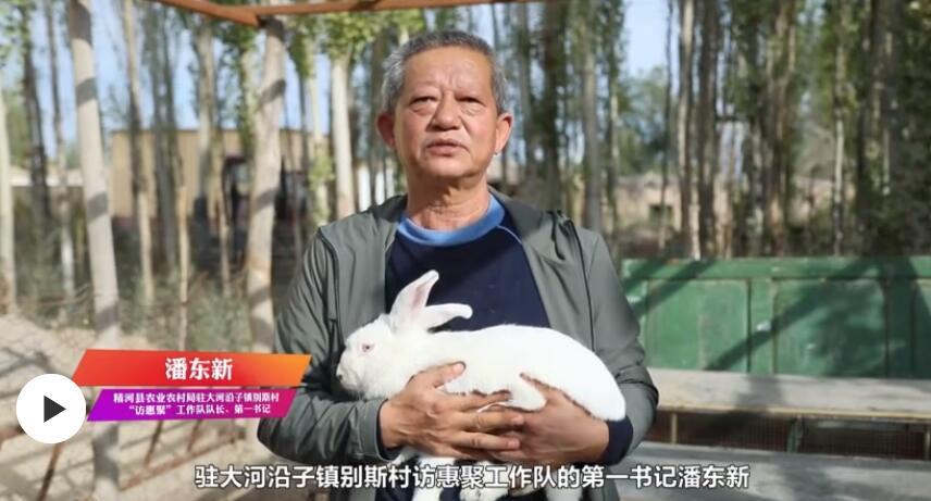 第一书记晒丰收:我为别斯村多品种兔代言