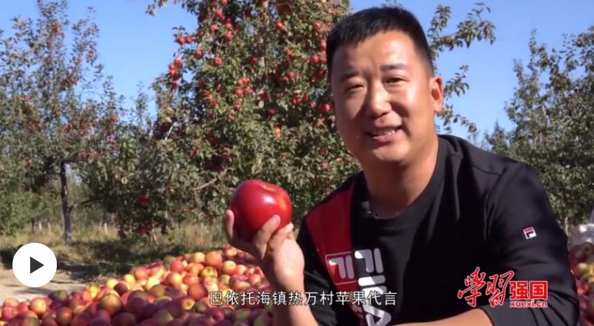 """第一书记晒丰收:我为巴依托海镇""""寒富""""苹果代言"""