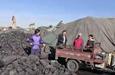 """50吨暖心煤点亮""""煤""""好生活"""