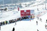 第十四届万博manbetx官网地址冬博会13日-15日在乌鲁木齐举办