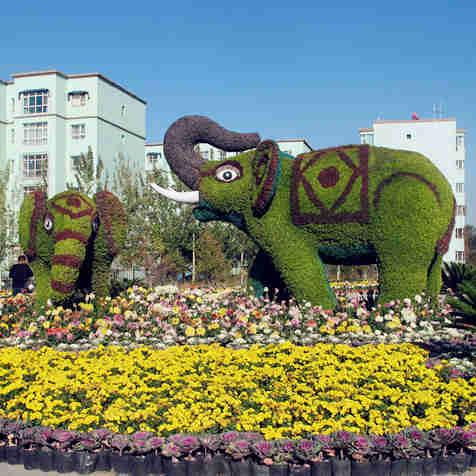 乌鲁木齐市植物园