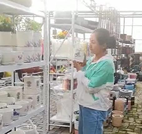 想让老板娘送个花盆