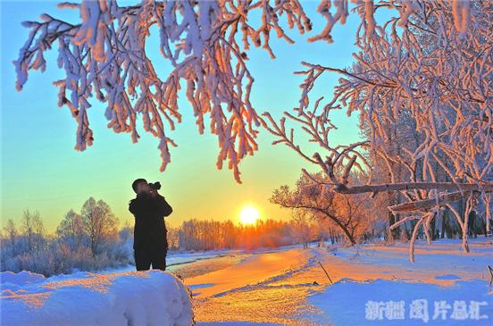 【新疆是个好地方】雾凇景观引游人