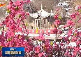 张灯结彩迎新春 新疆处处年味浓