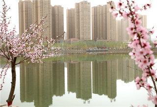 库尔勒迎来春季赏花观景最佳时节