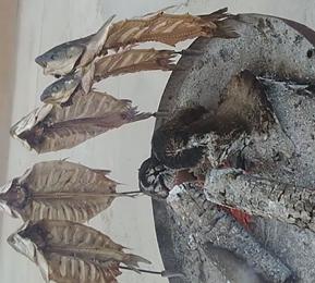 木炭烤鱼,想吃吗,欢迎来喀什