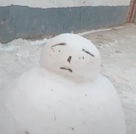雪人堆好了,看看好不好看