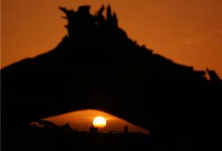 塔里木盆地:朝霞下的千年沧桑胡杨