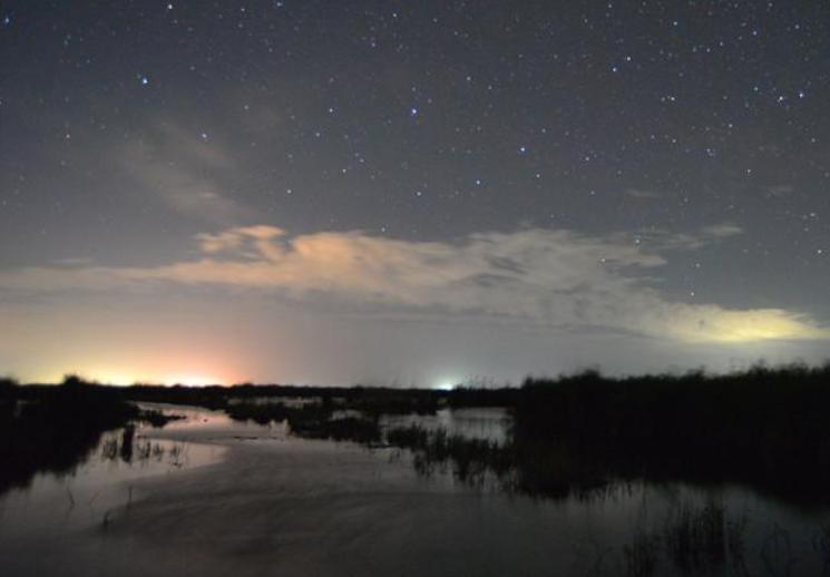 【高清组图】浪漫初夏 在新疆博斯腾湖湿地看璀璨星空