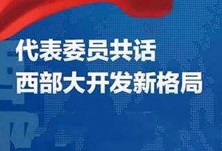 长图丨代表委员共话西部大开发新格局
