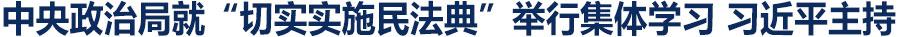 习近平在中央政治局第二十次集体学习时强调 充分认识颁布实施民法典重大意义 依法更好保障人民合法权益