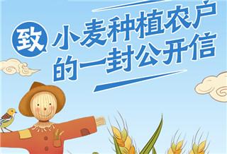 致小麦种植农户的一封公开信