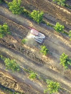 巴州20余萬畝冬小麥開鐮收割