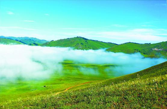 【新疆是个好地方】草原盛景