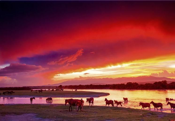 草原夕阳无限美