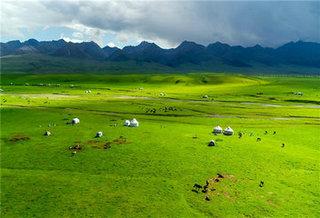 航拍8月的那拉提河谷草原