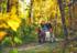 阿勒泰市斑斓秋景等你来