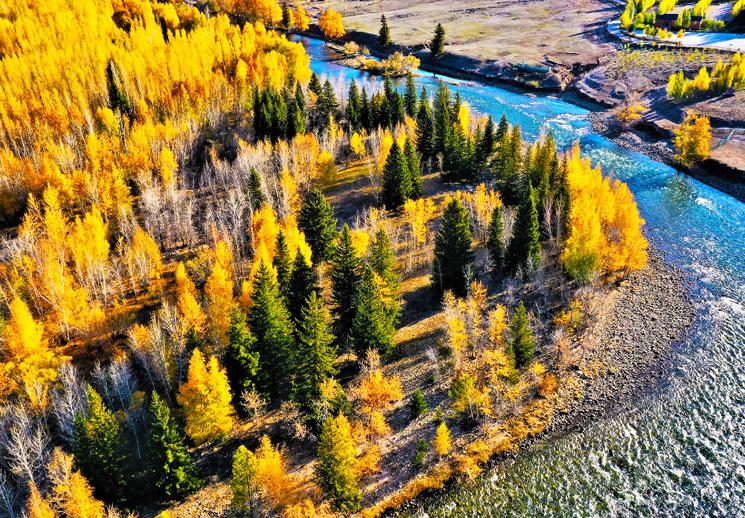 额尔齐斯大峡谷:山水草木浸润秋之气息