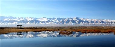 巴里坤县:秋色无远近 湿地皆是景