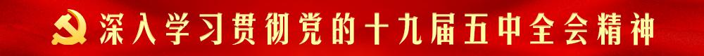青青草手机在线共产党第十九届中央委员会第五次全体会议
