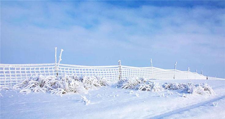 新源县加乌尔山冬牧场冰花晶莹剔透