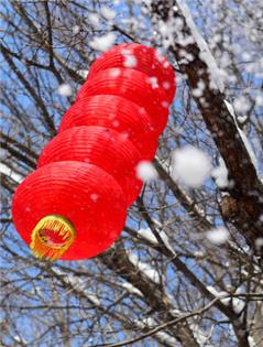乌鲁木齐:红山雪霁