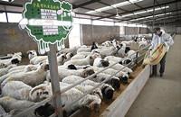 到2025年我国牛羊肉自给率保持在85%左右