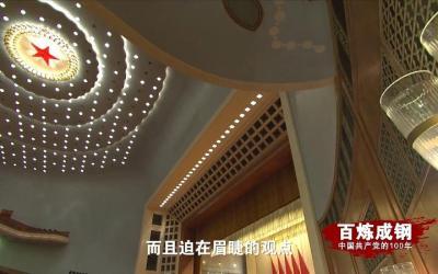 《百炼成钢:中国共产党的100年》第五十集:和平与发展