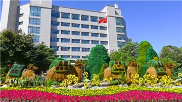 奎屯:多彩花堆扮靓城市