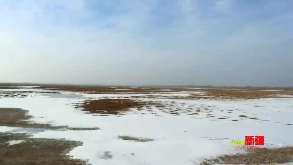 这里是新疆   雪橇