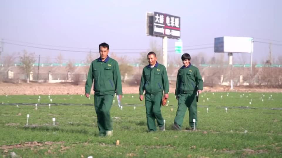 这里是新疆   努尔艾力:帅气的种田小伙儿