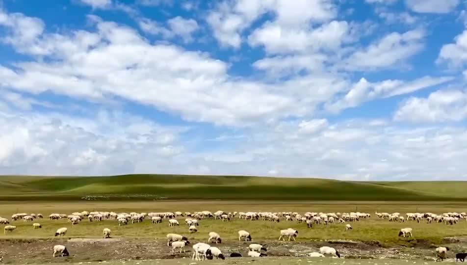 这里是新疆   如诗如画的巴音布鲁克草原