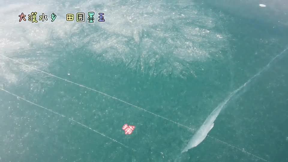 这里是新疆   冬捕螃蟹